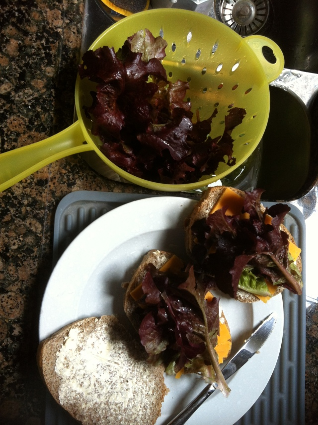 Giles' delicious lettuce sandwich